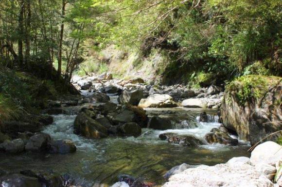 Makiekie Creek.