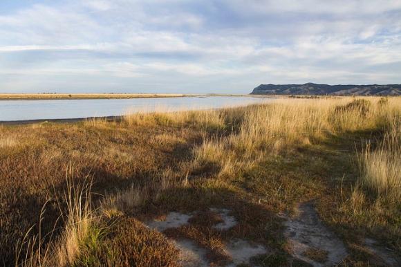 Wairau Lagoons, South Marlborough. Photo: Ricky Wilson | CC BY 2.0.