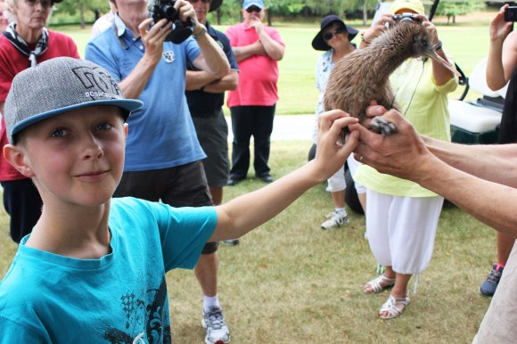 Marco patting a rare ginger North Island Brown Kiwi chick.