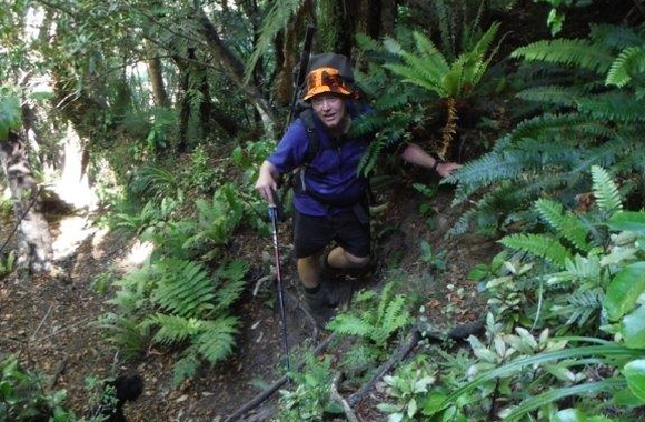 Blog: Tramping to Roaring Stag Hut