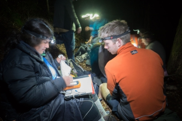 DOC staff and volunteers collecting data about the bats. Photo: Graham Dainty.