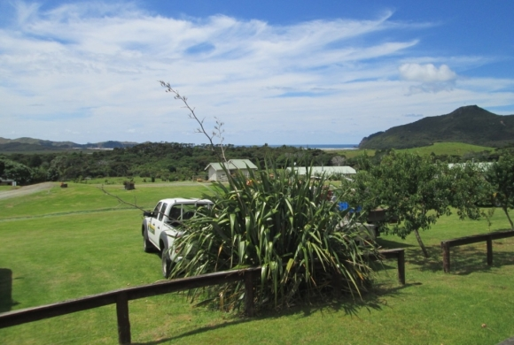 The view from the DOC office on Great Barrier Island.