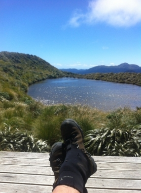 The view from Maungahuka Hut.