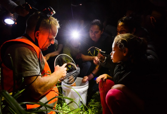 Into the night. Uawanui Sustainability Project Bio Blitz. Tolaga Bay. Photo: Mark Coote ©