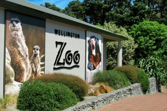 Wellington Zoo.