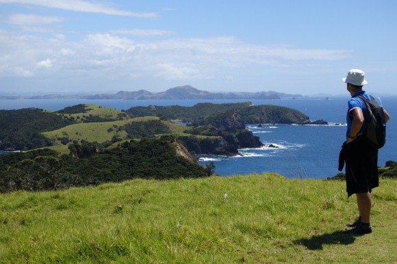 Views from the top of Urupukapuka Island.