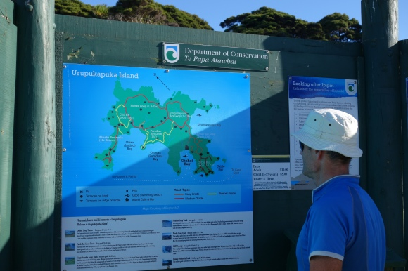 Checking out the walking options on the DOC interpretation sign on Urupukapuka Island. Photo: Beverley Bacon.