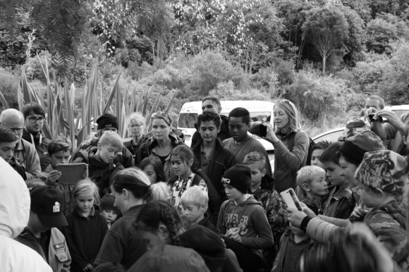 The fascinated crowds watching the kiwi release. Photo: Nina Mercer.