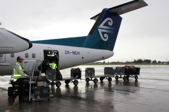 Three kiwi are unloaded from a Air New Zealand flight at Palmerston North Airport. Photo: Nina Mercer.