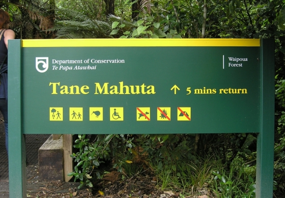 Tāne Mahuta DOC sign. Photo: Charlie Brewer | CC BY-SA 2.0.