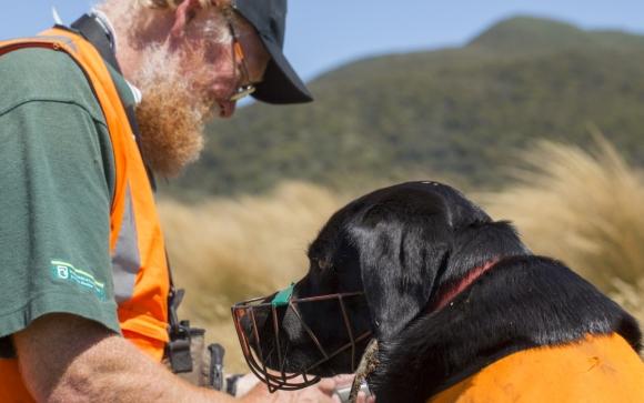 Hugh Robertson with his certified kiwi dog, Cara. Photo © Sabine Bernert.