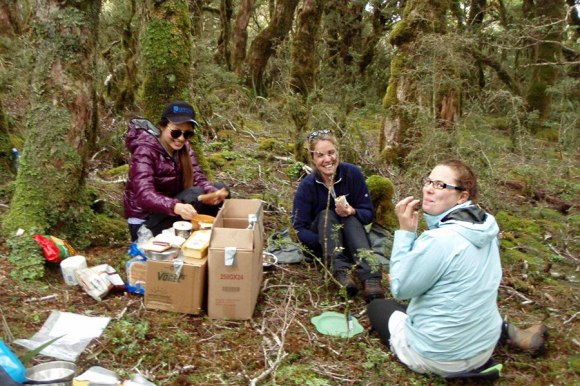 From Left: Moyang Li, Oonagh Daly and Caroline Hodges take a well earned break from snail searching at the Mt Stevens snail plots, Takaka. Photo: DOC.