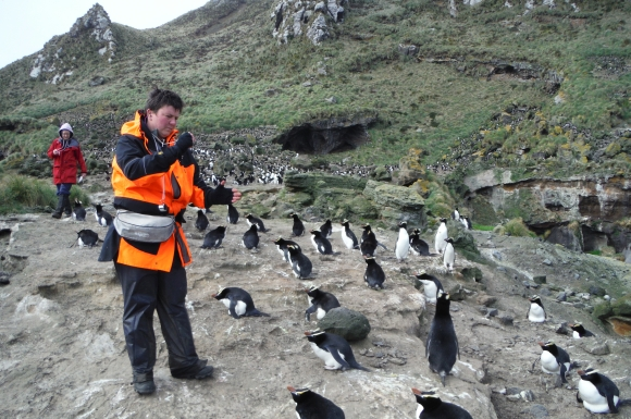 DOC ranger Jo Hiscock counting penguins. Photo: Kathryn Pemberton.