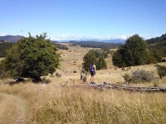 Kahurangi tramping to Wainui Hut.