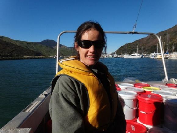 Heading to Stephens Island from Havelock, aboard the Waiata.