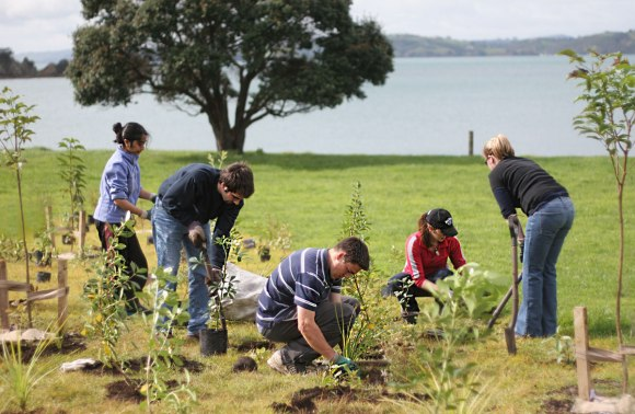 Volunteers planting native trees on Motutapu Island. Photo: .taf | flicrk | CC BY-NC 2.0.