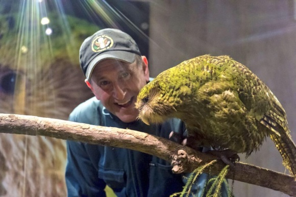 U.S. Ambassador with Sirocco the kākāpō. Photo: U.S. Embassy, Wellington.