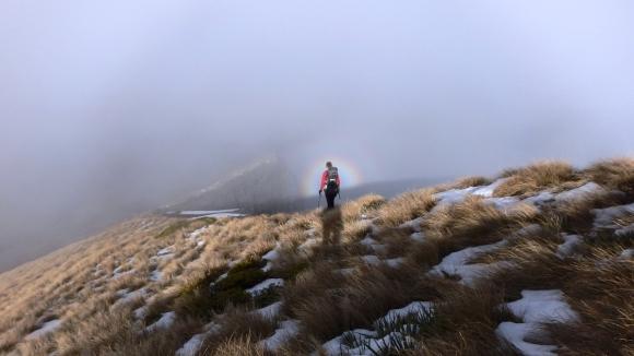Tramper on Mount Patriarch ridge in Kahurangi National Park.