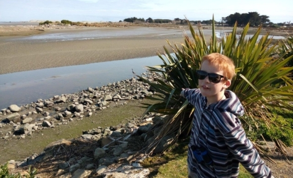 Spotting a heron at the Manawatu Estuary.