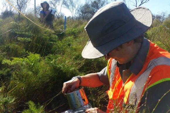 DOC scientist Paula Reeves and Jacqui Bond measuring the vegetation.