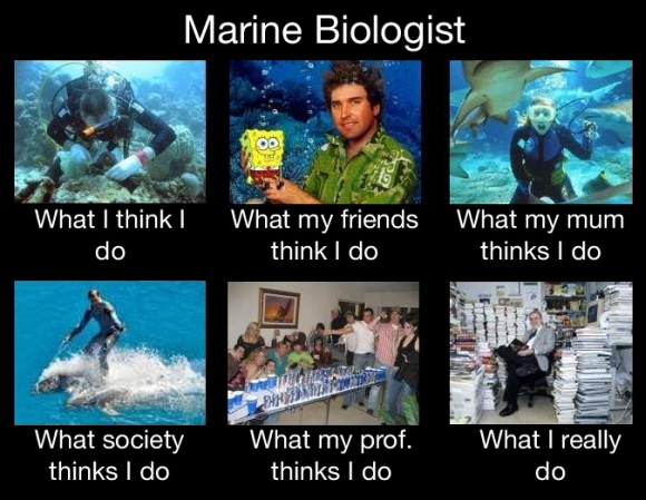 An appropriate marine meme. Image: www.uthinkido.com
