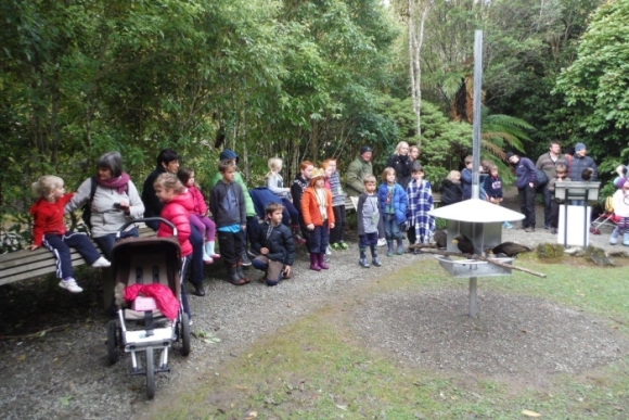 Feeding the kākā at Mount Bruce.