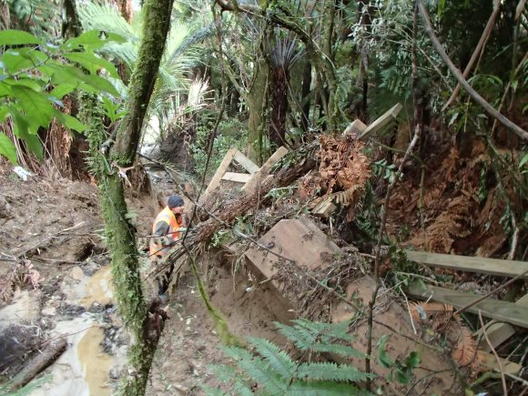 Engineer Kate checking out the damage in Whanganui National Park.