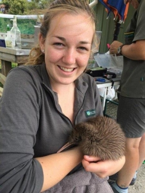 Volunteer Kristy holding a rowi kiwi chick in Franz Josef.