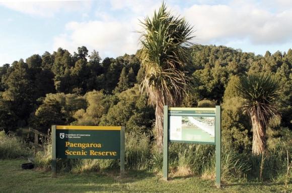 Paengaroa Scenic Reserve.