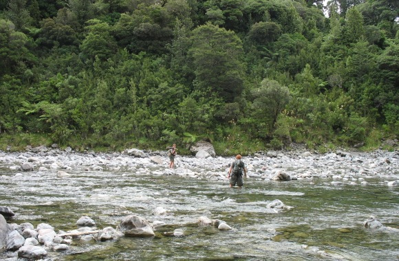 Crossing the Waiohine River to monitor short-tailed bats in the Tararuas.