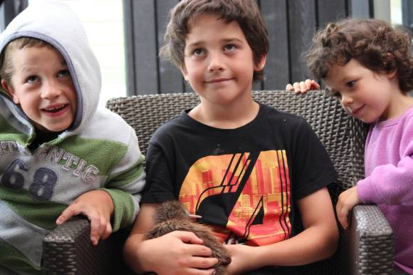 Matthew, Michael and Abbie-Lee with one of the kiwi chicks. Photo: Sian Moffitt.