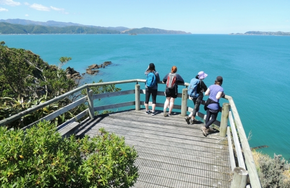 Spectacular vantage from one of the lookouts on Matiu Somes Island.