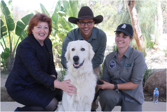 Minister Maggie Barry, Threatened Species Commissioner Gregory Andrews and I with Albus, the Maremma sheepdog ambassador.