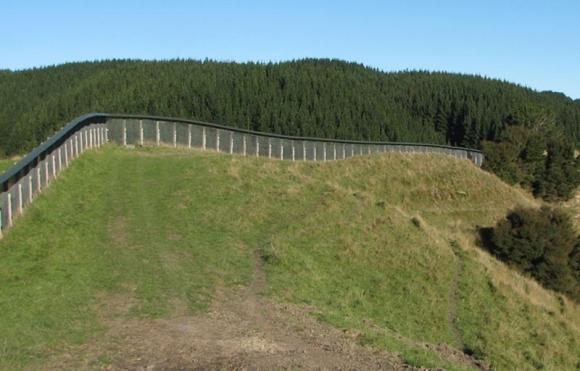 The predator fence at Cape Sanctuary.