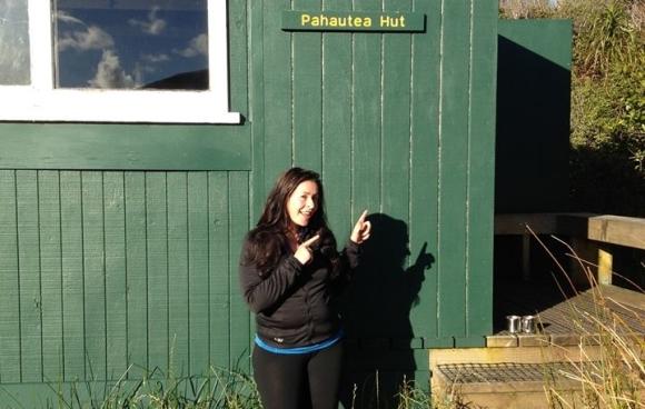 Pahautea Hut on Mt Pirongia.