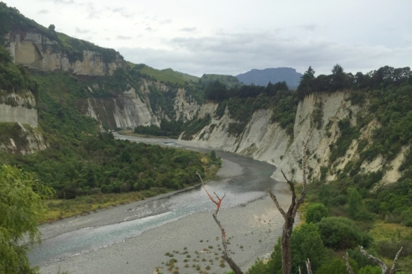 A view of the Rangitikei River.