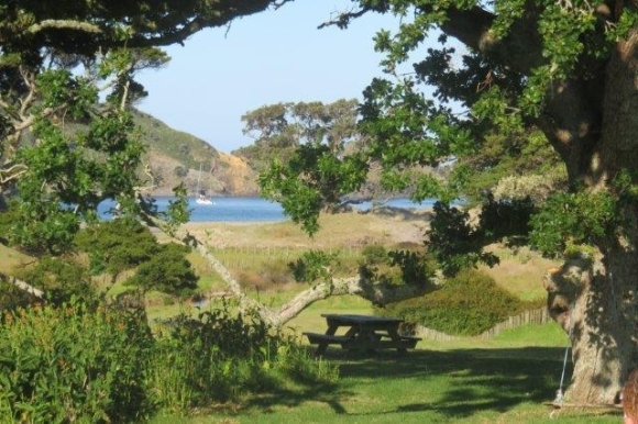 Picnic spot on Aotea/Great Barrier Island.