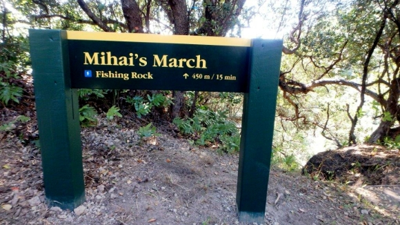Mihai's March sign.