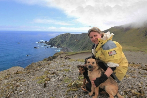 Leona Plaisier with pest detection dogs on Macquarie Island. Photograph: Leona Plaisier.