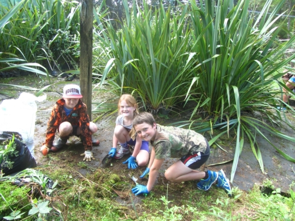 Volunteers cleaning up the Trounson Park Kauri Park nursery.