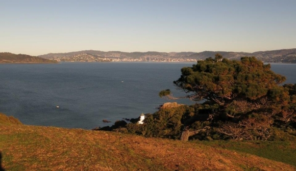 Looking across to Wellington from Matiu/Somes Island.