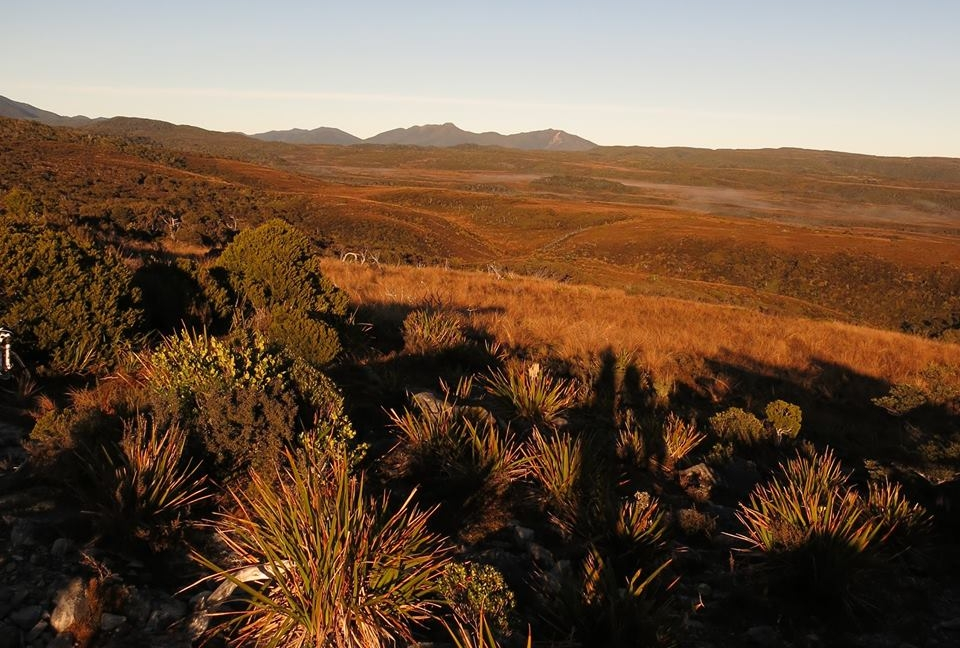 Blog: Blue skies, sunshine, sandflies and the Heaphy Track