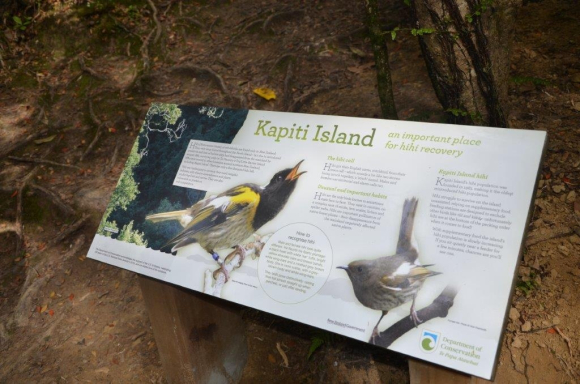 New information panels on Kapiti Island. Photo: Don Herron.