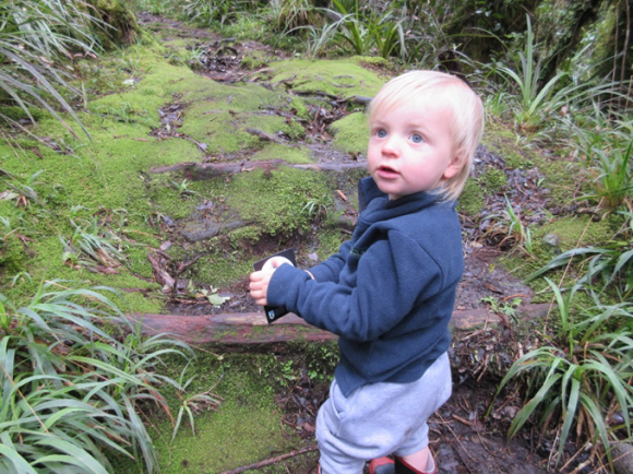 Corban on a geocaching adventure in Egmont National Park.