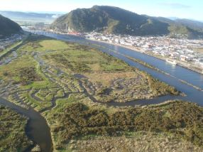 An aerial view of Cobden Island after four years of restoration work.