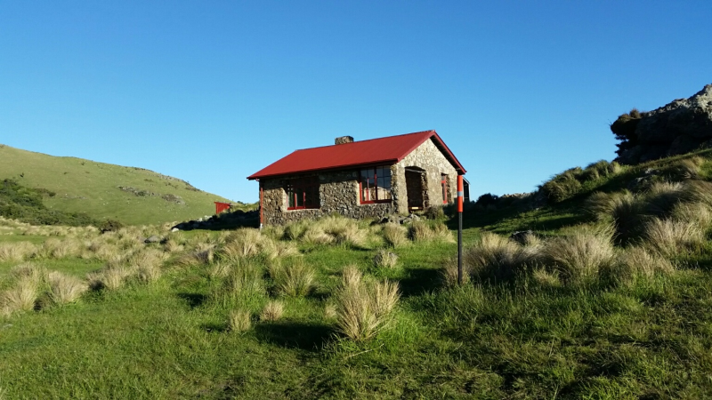 Blog: 10 reasons to visit Te Ara Pātaka – Summit Walkway