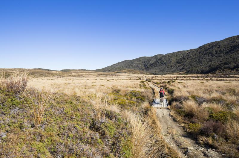 Photo of the week: Mountain biking on the Heaphy Track