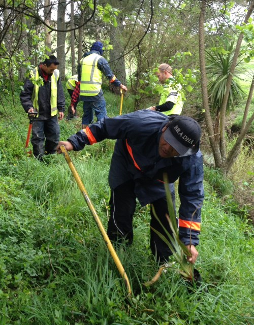 Community 2016 Te Whangai Trust.jpg