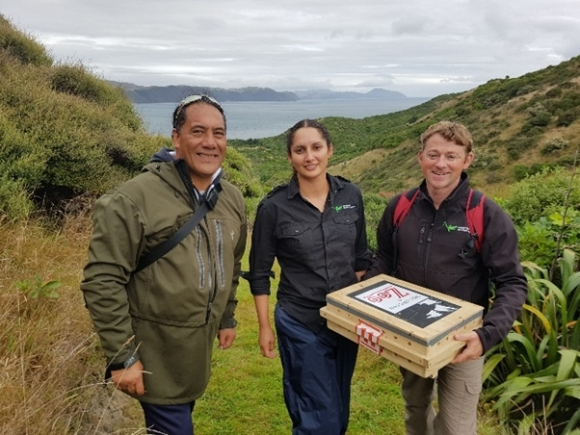 Nathan Rei, from Ngāti Toa, Trent Bell and Asha Fernandez from Eco Gecko on Mana Island.