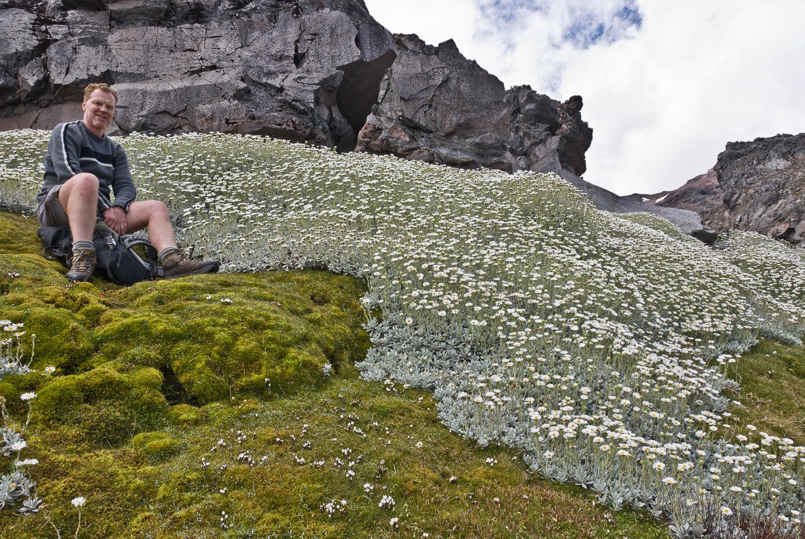 Why botany matters: Peter DeLange